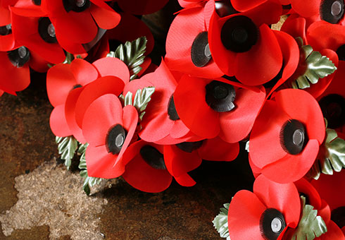 Remembrance and Armistice Day events