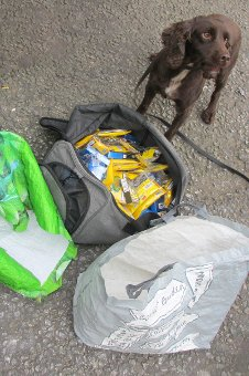 Dogs sniff out illegal cigarette stash