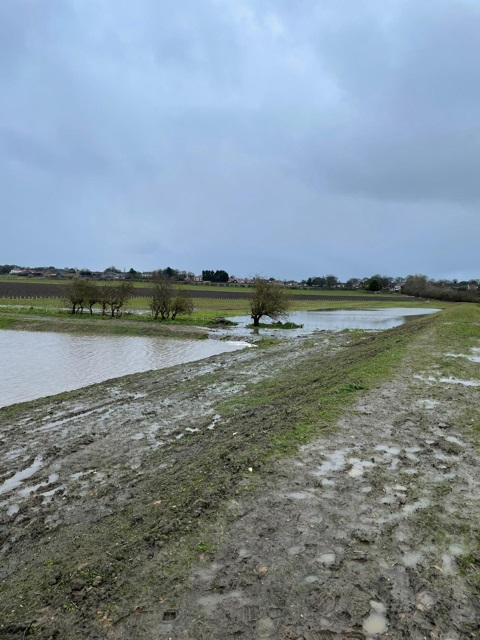 Flood Protection Project Put to the Test
